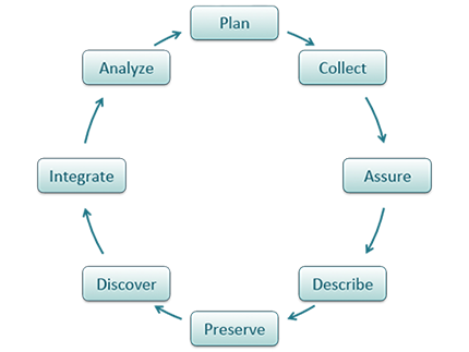 Data ONE Data Life Cycle